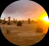 image 20200324_192913.png (4.7MB) Lien vers: http://oasis-sourcedevie.com/?AccueilEchange/#bienvenue